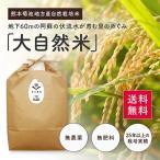 【平成29年度産新米】熊本県【大自然米】完全無農薬・肥料不使用 玄米5kg 送料無料