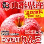 訳あり サンふじ りんご ご家庭用 5kg 生食可 山形県産 リンゴ 人気 果物 フルーツ あすつく 送料無料 お取り寄せ