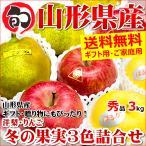 お歳暮 ギフト 冬の果実3色詰め合わせ 3kg (贈答用/秀品) りんご 山形県産 御歳暮 贈り物 果物 フルーツ 送料無料 お取り寄せ