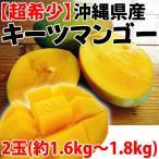 沖縄産 キーツマンゴー 2玉 (約1.6kg - 1.8kg)×1箱 送料無料 沖縄 人気 南国フルーツ 希少