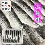 小肌 業務用 酢じめ 1kg入り【寿司・酢の物・おせち用】(冷凍便)