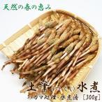 つくし水煮 300g入り 三重県産 春の旬の味をお届け[いなべ冷蔵]