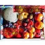 フルーツギフト 果物詰め合わせ 贈答品 大サイズ化粧箱入り 季節で変わるフルーツセット 当店自慢の旬の果物をお届け!