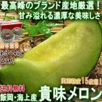 貴味メロン 飯岡産限定 約4kg 2玉入り 贈答規格 千葉県産 国内屈指のメロン産地で育てたギフト果物!濃厚な甘さと抜群の味