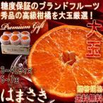 みかん はまさき 5〜7玉入り 3〜4Lサイズ 佐賀県産 大玉規格 JAからつ 贈答品 糖度保証のブランドフルーツ!大玉・秀品厳選のギフト果物