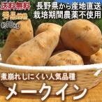 産地直送 メークイン じゃがいも 約10kg 長野県産 贈答規格 煮崩れしにくい人気のジャガイモ!農薬を用いないこだわり栽培で抜群の美味しさ
