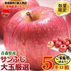 りんご 訳あり 格安 りんご 5kg箱 青森県産りんご 大玉サンふじ 5kg箱 家庭用訳あり 送料無料 リンゴ 約5キロ 4589677184351
