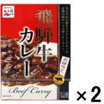 アウトレット永谷園 飛騨限定 飛騨牛カレー 1セット(200g×2個)