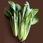 【パンドラファーム】奈良または和歌山などの国内産 有機栽培小松菜 200g