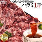 牛肉 焼肉セット やわらか ハラミ 味噌だれ漬け メガ盛りセット(1kg)送料無料 バーベキューセット BBQ 焼き肉