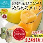 めろめろメロン 3〜4Lサイズ 青肉又は赤肉 1玉 宮崎県 JAこばやし 送料無料 産地直送