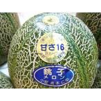 甘さ16 銚子メロン アムスメロン 日本農業賞受賞 3〜6個入り 約5kg 送料無料 お中元 ご贈答 訳あり品ではございません