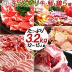 肉 バーベキュー用 セット BBQ 牛肉 豚肉 鶏肉 タレ 合計 2.7kg (牛カルビ 豚肩ロース 豚バラ 鶏もも) 10人前〜15人前 端っこまで美味しい わけあり